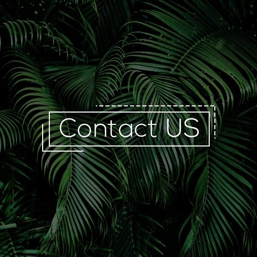 Contact-US----OTCZONE-Mobile